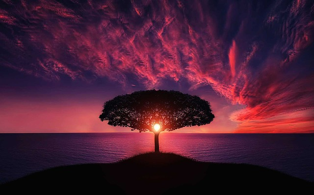 LeetCode-Tree